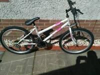 Girls mountain bike £15