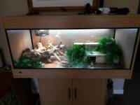 4x2x2 vivarium complete set up