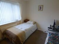SINGLE room in Highbury & Islington