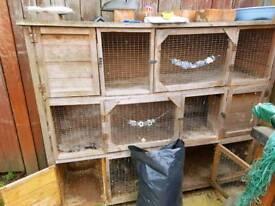 3 storey rabbit hutch