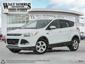 2016 Ford Escape SE: NO ACCIDENTS & HEATED SEATS