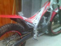 beta evo 250 trials bike for sale