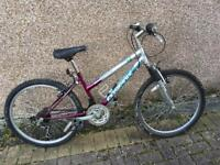 Ladies Mountain Bike In Need Of Some TLC