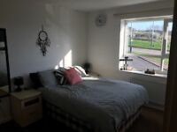 2 bed spacious house to rent in sheffield