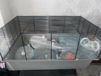 FREE HAMSTER CAGE