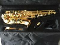 Selmer Liberty Alto Saxophone, purchased new in 2013, excellent condition, barely used.