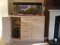 3ft aquarium full set up