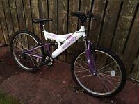 Girls/Ladies Mountain bike Raleigh Saturn Mountain Ridge