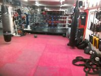 OUTDOOR / INDOOR COMBAT STRIKING & FITNESS 4-WEEK BOOTCAMPS! 100.00 avg rate* - Personal Coaches