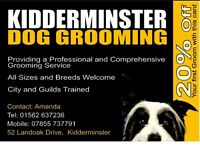 KIDDERMINSTER DOG GROOMING NOW OFFERING 20% OFF YOUR FIRST GROOM,JUST QUOTE GUMTREE