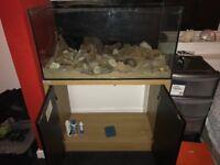 Clear seal 200l fish tank