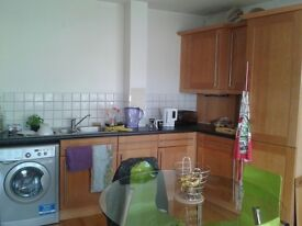 One double bedroom to rent in Kentish Town in a 100 sqm flat