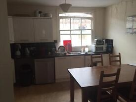 Double room to let in Quiet Mews House In Hove £485 pcm