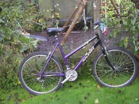 ladies raleigh vixen 21 in frame,immaculate