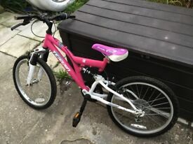 Girls bicycle found in Northampton