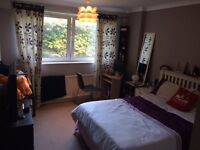 Big and modern double room for rent in Putney
