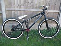 2005 Mongoose Ritual, Jump Street Park Dirt Bike