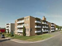 Sault Ste. Marie 2 Bedroom Apartment for Rent: Stunning upgrades