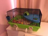 Hamster including cage and ball