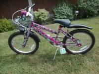 "Girls Raleigh krush bike 18"" wheel bike cycle off road mountain pink hearts"