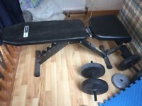 Gym bench + weights