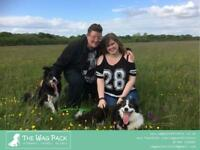 The Wag Pack - Affordable Dog Walkers / Walking