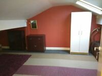 Shared accommodation room available