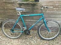 Vintage giant mountain bike