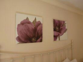2 x LOVELY FLOWER PRINTS (FRAMELESS ) ONLY £10