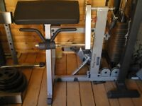 Body Solid Bicep and Tricep Curl Machine