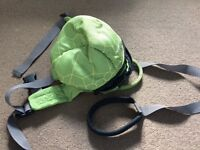 Little life backpack harness