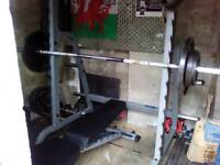 Body Solid multi press rack and folding bench