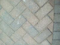 Block Pavers - Approx 450 off