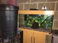 125l Juwel fish tank 80cm long full set up with stand heater filter light gravel ornament all work