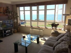 Double room in STUNNING seafront flat