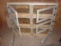 indoor rabbit hutches for breeding