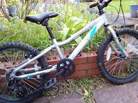 Kid's bike: Saracen Swift. 20-inch wheels, would suit 5-9 years old.