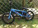Boy's BMX