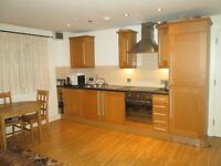 1 double bedroom,all the bills included £360pcm