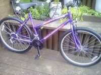 LADIES UNIVERSAL WILDTHING MOUNTAIN BIKE WITH 18 GEARS,