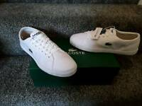Lacoste trainers size 7 (New, boxed)