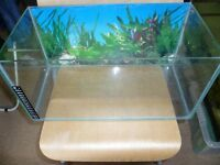 30l fish tank with heater and internal filter!