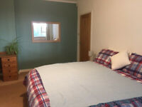 Large ensuite room in Findhorn Village to rent in quiet house surrounded by woodland