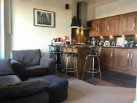 Beautiful Redecorated 1 Bed Apartment Right Next to Holyrood Park