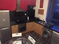 Studio flat to rent - Fully furnished, City Centre, Ashvale Place