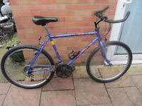mens raleigh mountain bike with lock and lights £49.00