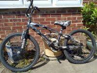 "BMX 22"" Wheels with giro ,Magna Punishment"