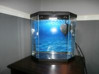 Ciano Aquarium Black 25 Litre w/ underwater filter