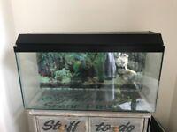 Large Glass 108 L/ 24 Gallons Fish Tank / Turtle Aquarium