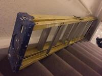 3 Meter Standalone Ladder